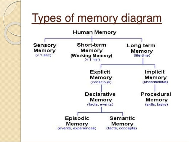 example of short term memory in psychology