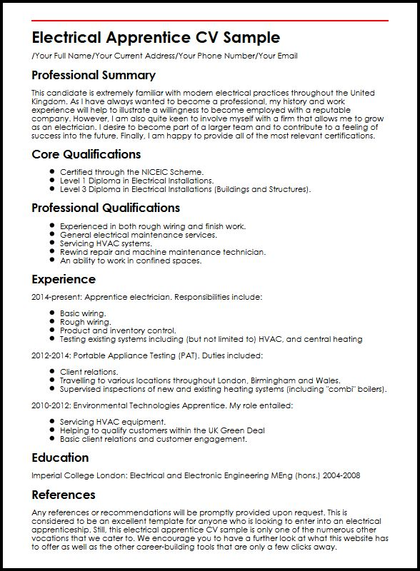 professional experience and goals summary example