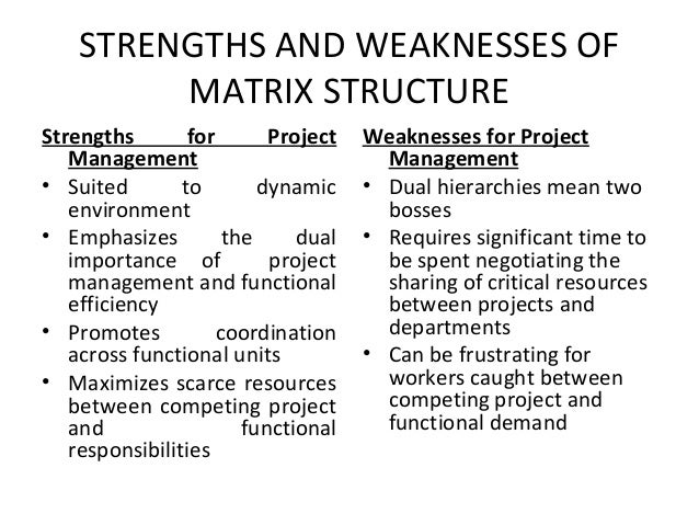 emotional strengths and weaknesses project management example