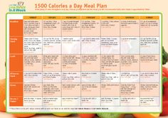 example of 500 calorie per day diet